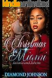 Christmas in Miami: Antonia and Jahiem