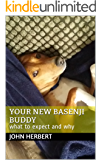 Your New Basenji Buddy: what to expect and why