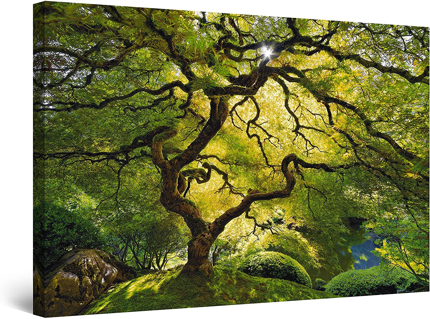 Startonight Canvas Wall Art - Beautiful Green Maple, Nature Framed 32 x 48 Inches