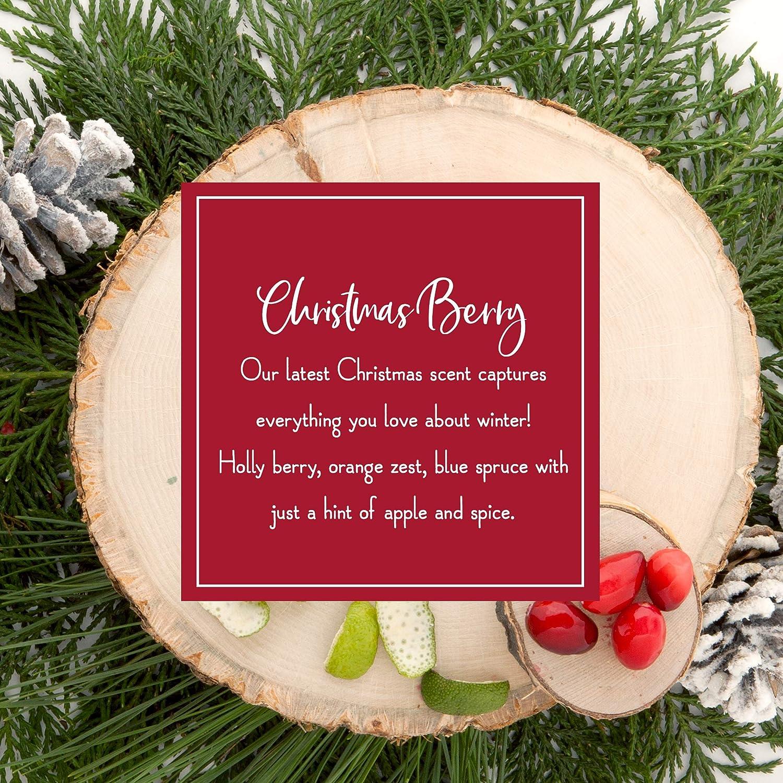 Winter Seasonal Christmas Fragrances Shared Earth Incense Sticks Set of 3