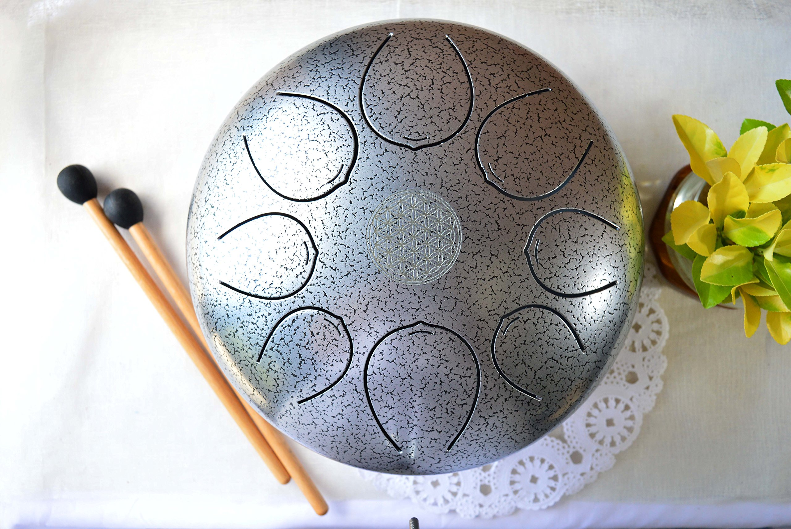 WuYou 10in Steel Tongue Drum Pentatonic Handpan Tank, Special 8 notes with free bag and 2 mallets
