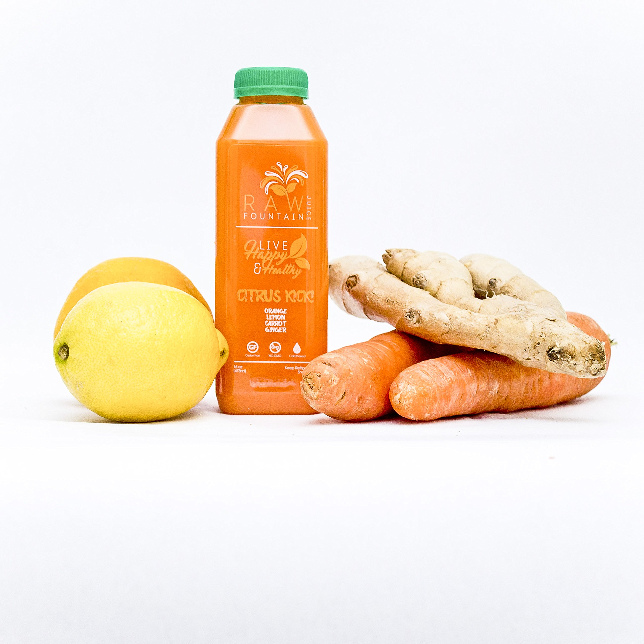 7 Day Juice Cleanse by Raw Fountain Juice - 100% Fresh Natural Organic Raw Vegetable & Fruit Juices - Detox Your Body in a Healthy & Tasty Way! - 42 Bottles (16 fl oz) + 7 BONUS Ginger Shots by Raw Threads (Image #5)