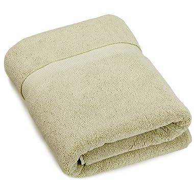 Pinzon Heavyweight Luxury 820-Gram Hand Towel - Sage
