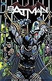 Batman Vol. 11: The Fall and the Fallen (Batman: the Fall and the Fallen)