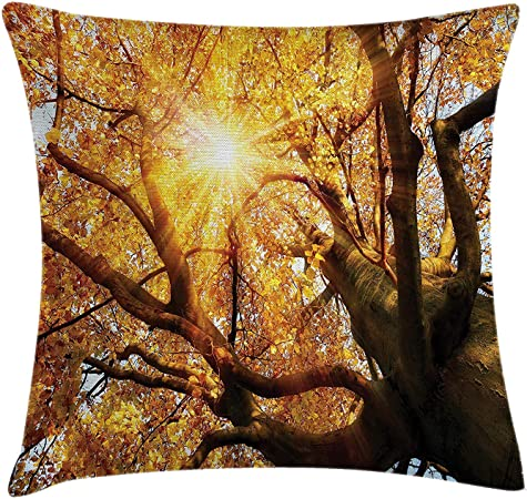 Zhiziqiu Forest Home Decor Throw Pillow Cushion Cover Canadian Maple Treetops With Hot Sunbeam Vibrant Beauty Habitat Image Decorative Square Accent Pillow Case 18 X 18 Inches Orange Brown Amazon Co Uk Kitchen