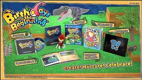 Birthdays the Beginning - Limited Edition (PS4) (New): Amazon.es: Videojuegos