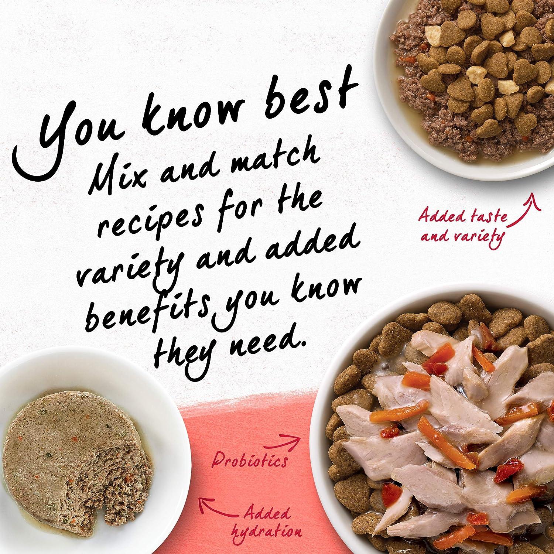 Purina Beyond Natural Dry Cat Food, Salmon y todo marrón arroz recepción, bolsa de 6 libras: Amazon.es: Productos para mascotas