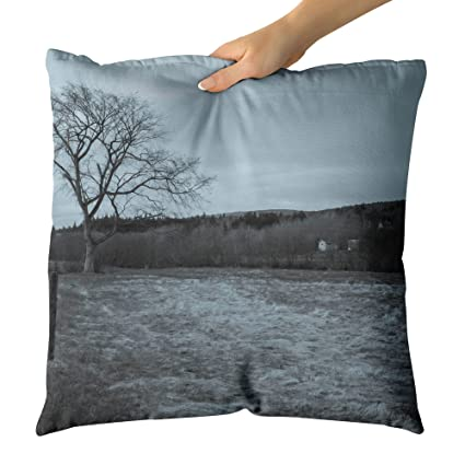 Amazon Westlake Art Canada Momotone Decorative Throw Pillow Adorable Decorative Throw Pillows Canada