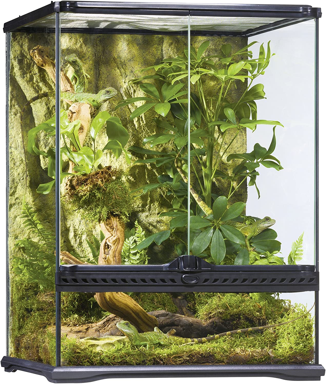 Exo Terra AllGlass Terrarium (Small/Tall,18x18x24)