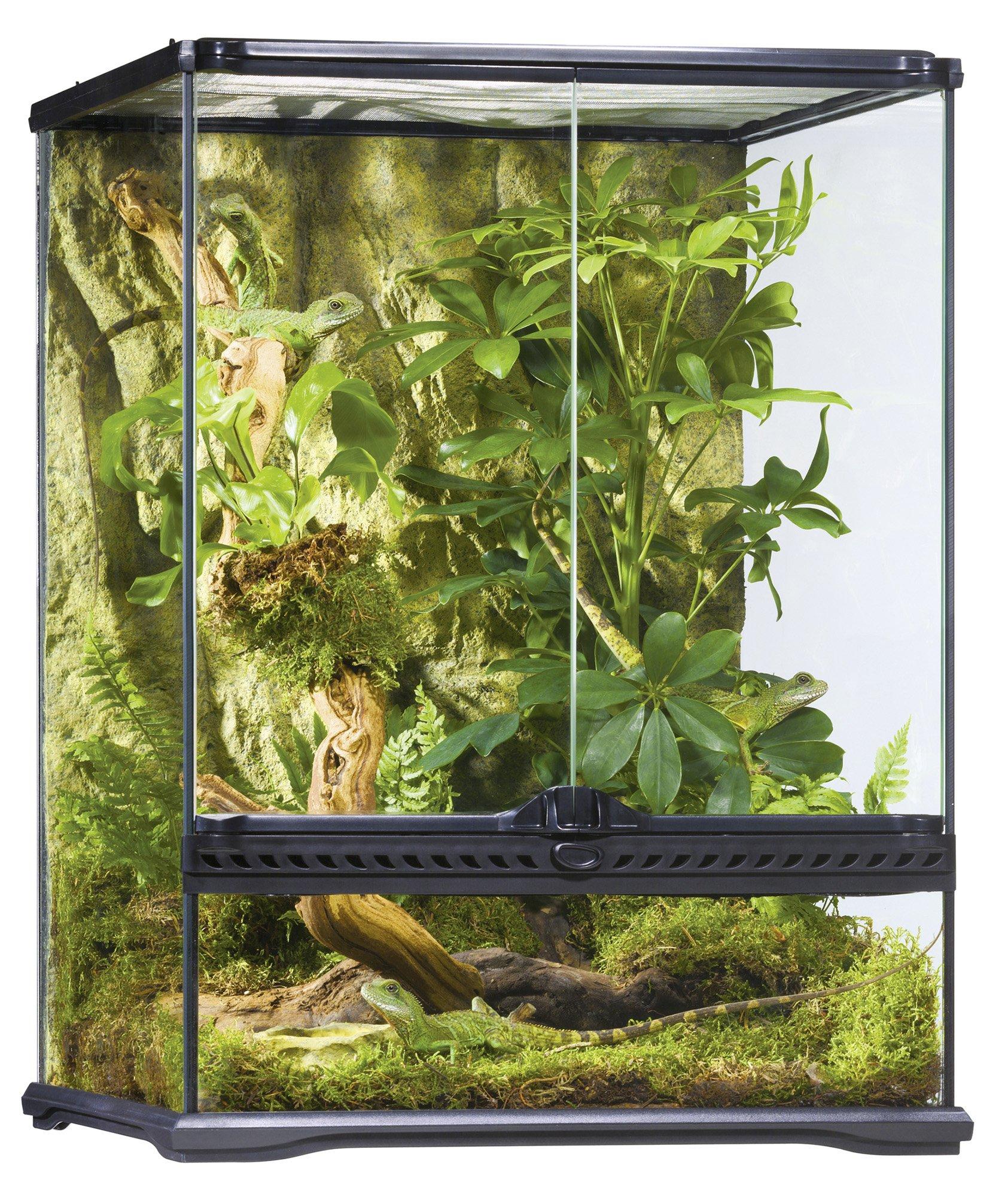 Exo Terra AllGlass Terrarium - 18 x 18 x 24 Inches by Hagen