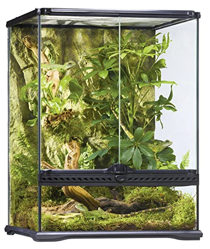 Amazon Com Exo Terra Glass Terrarium 18 By 18 By 24 Inch Pet