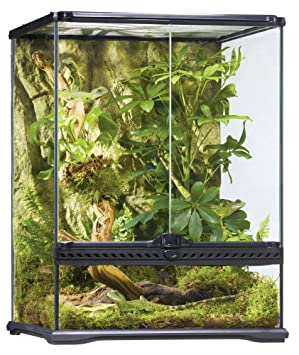 Exo Terra Glass Terrarium 18 By 18 By 24 Inch Amazon Ca Pet Supplies