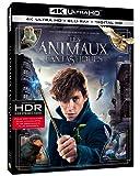 Les animaux fantastiques [Blu-ray 4K] [4K Ultra HD + Blu-ray + Digital HD]
