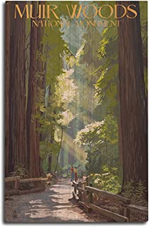 product image for Lantern Press Muir Woods National Monument, California - Pathway (10x15 Wood Wall Sign, Wall Decor Ready to Hang)