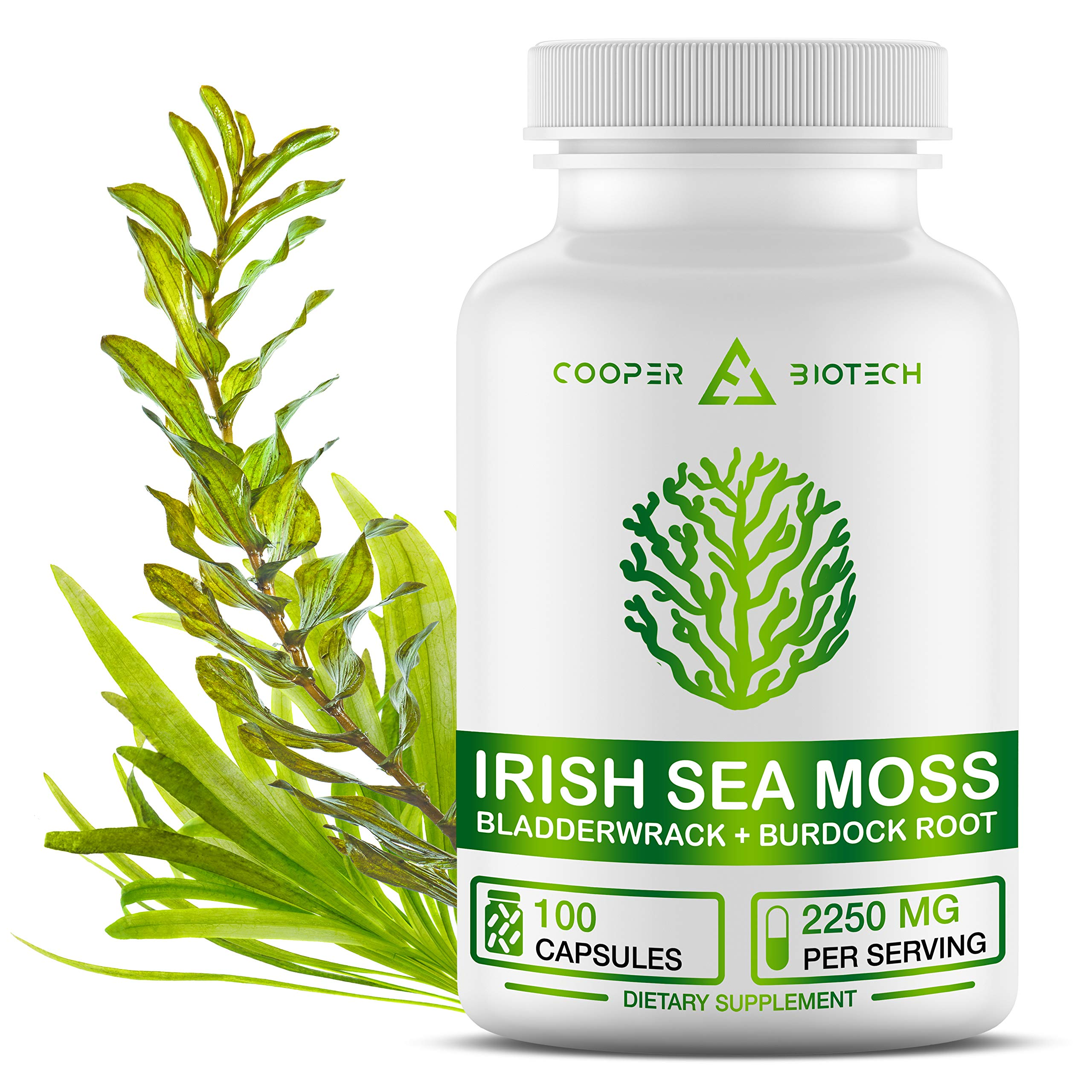 Irish Sea Moss Organic Supplement with Bladderwack and Burdock Root - Seamoss Raw Organic Pills - Wildcrafted Pure Sea Moss Powder - 100 Capsules 2250MG Serving