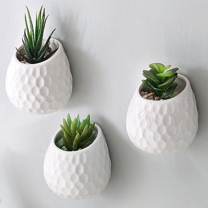 Macetas para cactushttps://amzn.to/35bZnK1