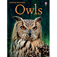 Owls: For tablet devices (Usborne Beginners)