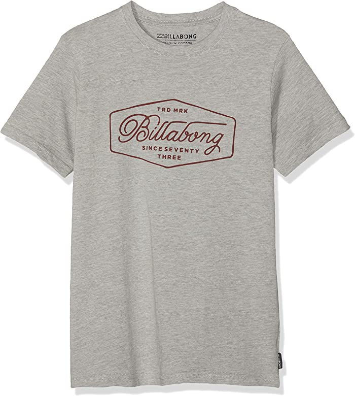 10 GREY- SIZE 14 /& 16 YEARS NEW Quiksilver Boys Printed T Shirt