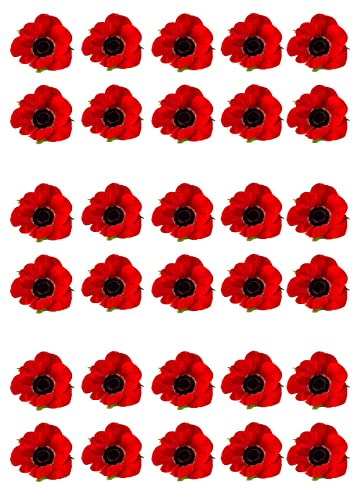 Red 50 mulberry paper poppy flower wedding card craft 2 cm amazon 30 red poppy remembrance day flower edible wafer paper cake toppers decorations mightylinksfo
