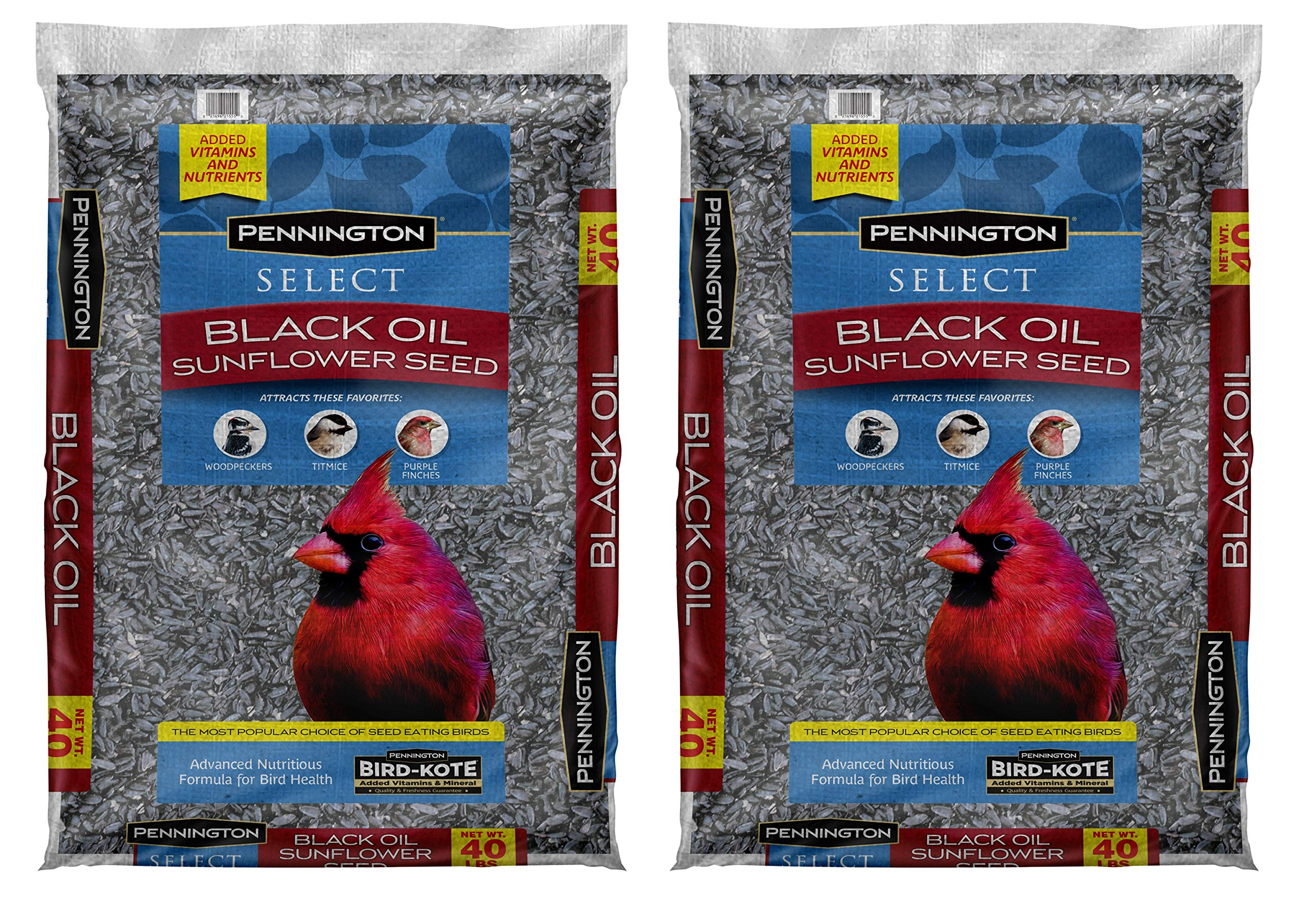 Pennington Select Black Oil Sunflower Seed Wild Bird Seed Feed, 40 Lbs (Pack of 2) Made in USA