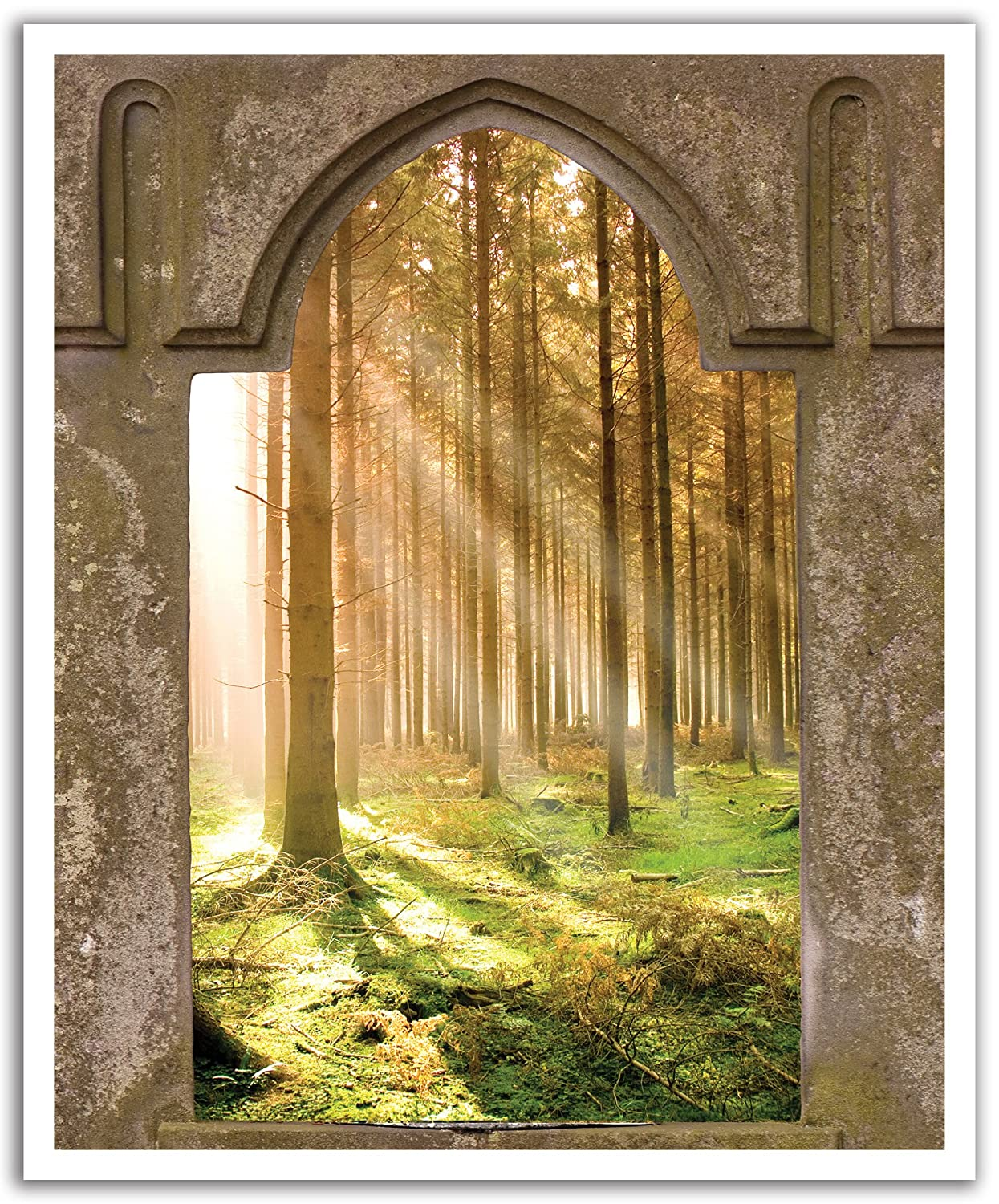 19.75-Inch x 24-Inch JP London POSLT0064 uStrip Lite Removable Wall Decal Sticker Mural Game of Thrones Mystic Forest Window