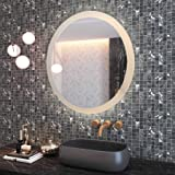 CO-Z 28'' Dimmable Round LED Bathroom Mirror, Plug-in Modern Lighted Wall Mounted Mirror with Lights&Dimmer, Contemporary Fog