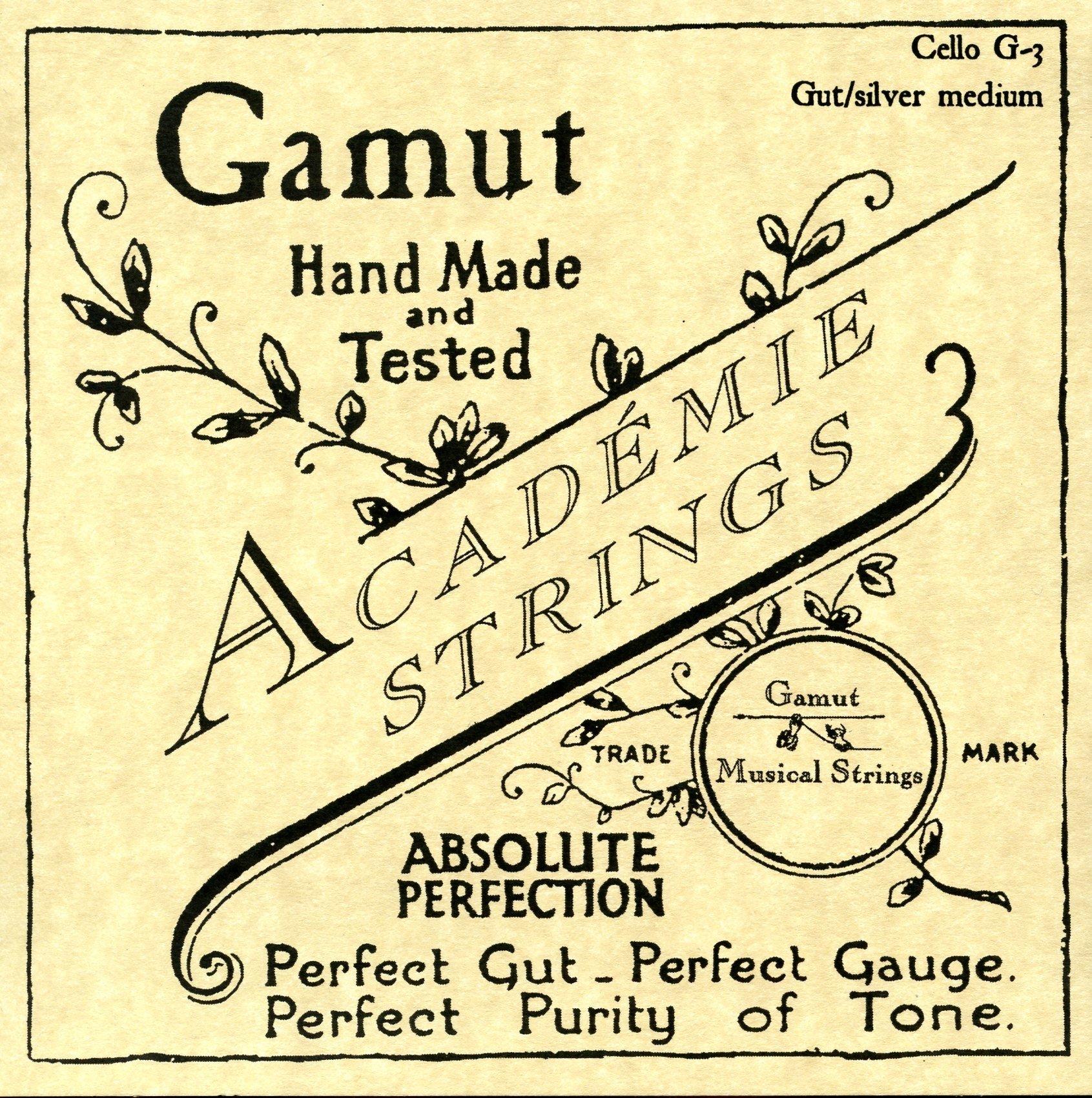 Academie Cello G-3 Gut/Silver Medium Gauge
