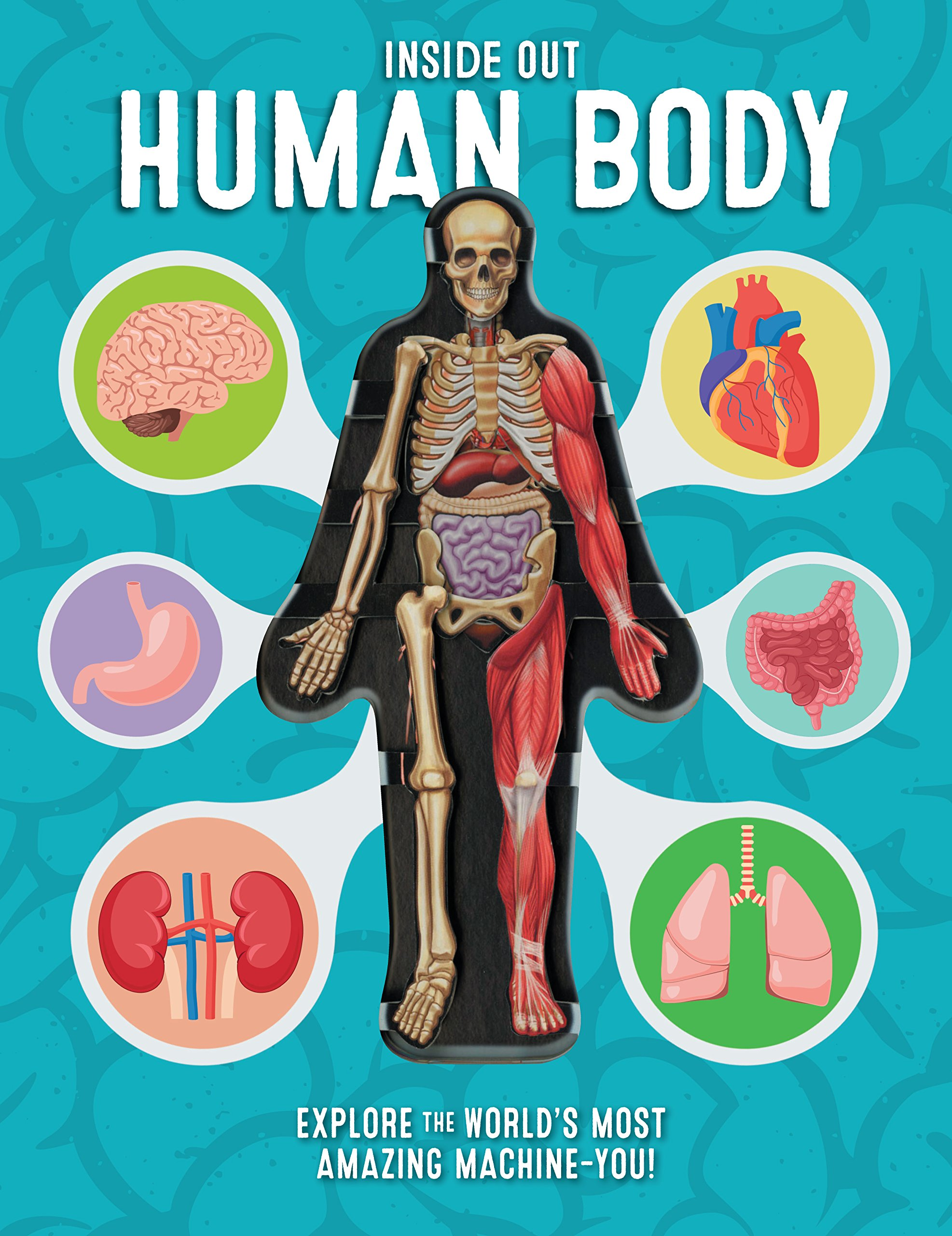 Inside Out Human Body: Explore the World's Most Amazing Machine-You!  Hardcover – October 10, 2017