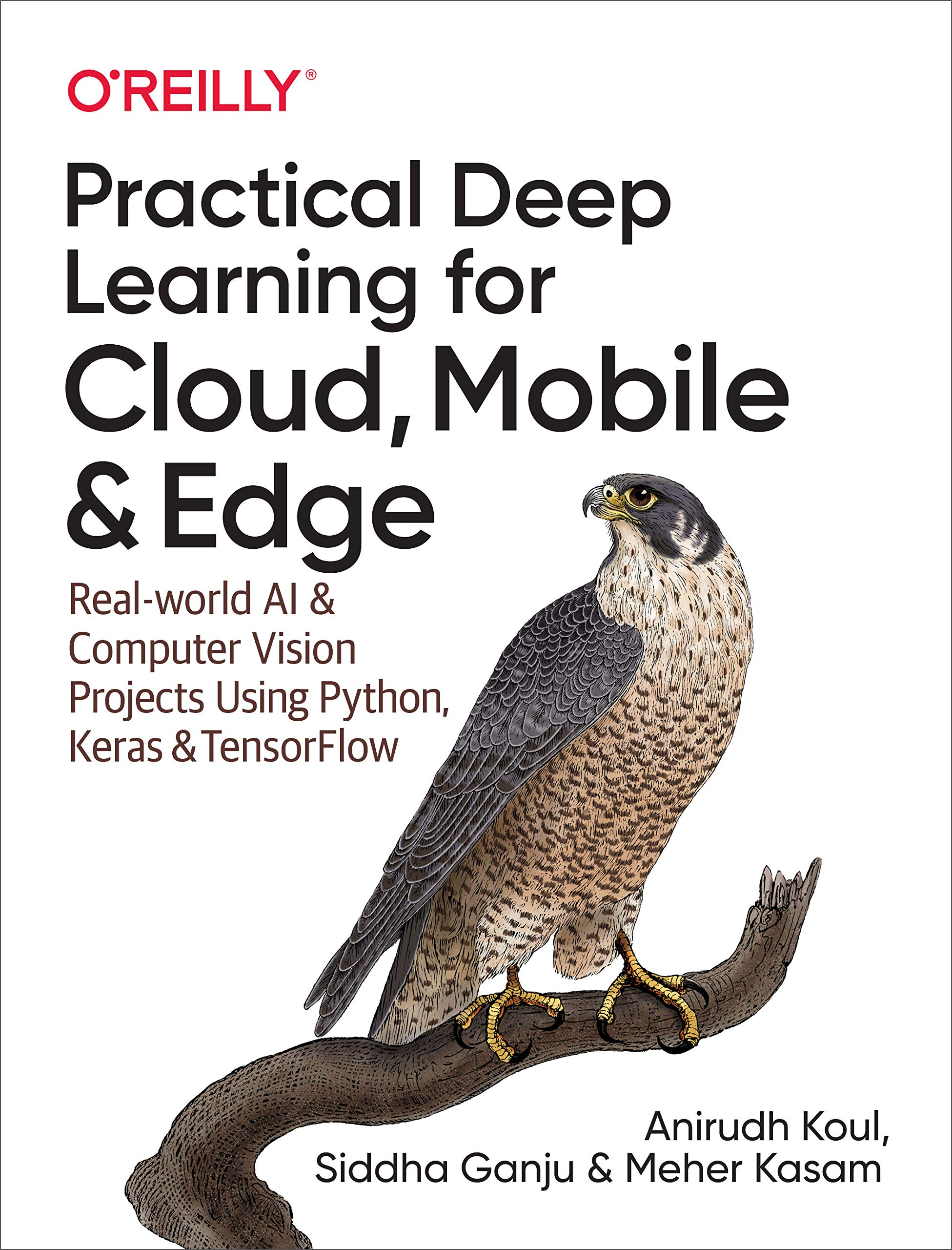 Practical Deep Learning for Cloud, Mobile, and Edge: Real-World AI & Computer-Vision Projects Using Python, Keras & TensorFlow (English Edition)