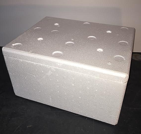thermowelt poliestireno Caja de EPS – Envío 29 litros: Amazon.es ...