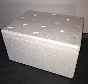 thermowelt poliestireno Caja de EPS - Envío 29 litros: Amazon.es: Productos para mascotas