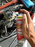 Gumout 800002231 Carb and Choke Cleaner, 14