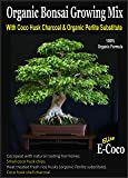 BONSAI TREE SOIL - BONSAI TREES COMPOST with CHARCOAL - CAN BE USED INDOOR FOR POTS & REPOTTING - READY TO USE (1 LITRE)
