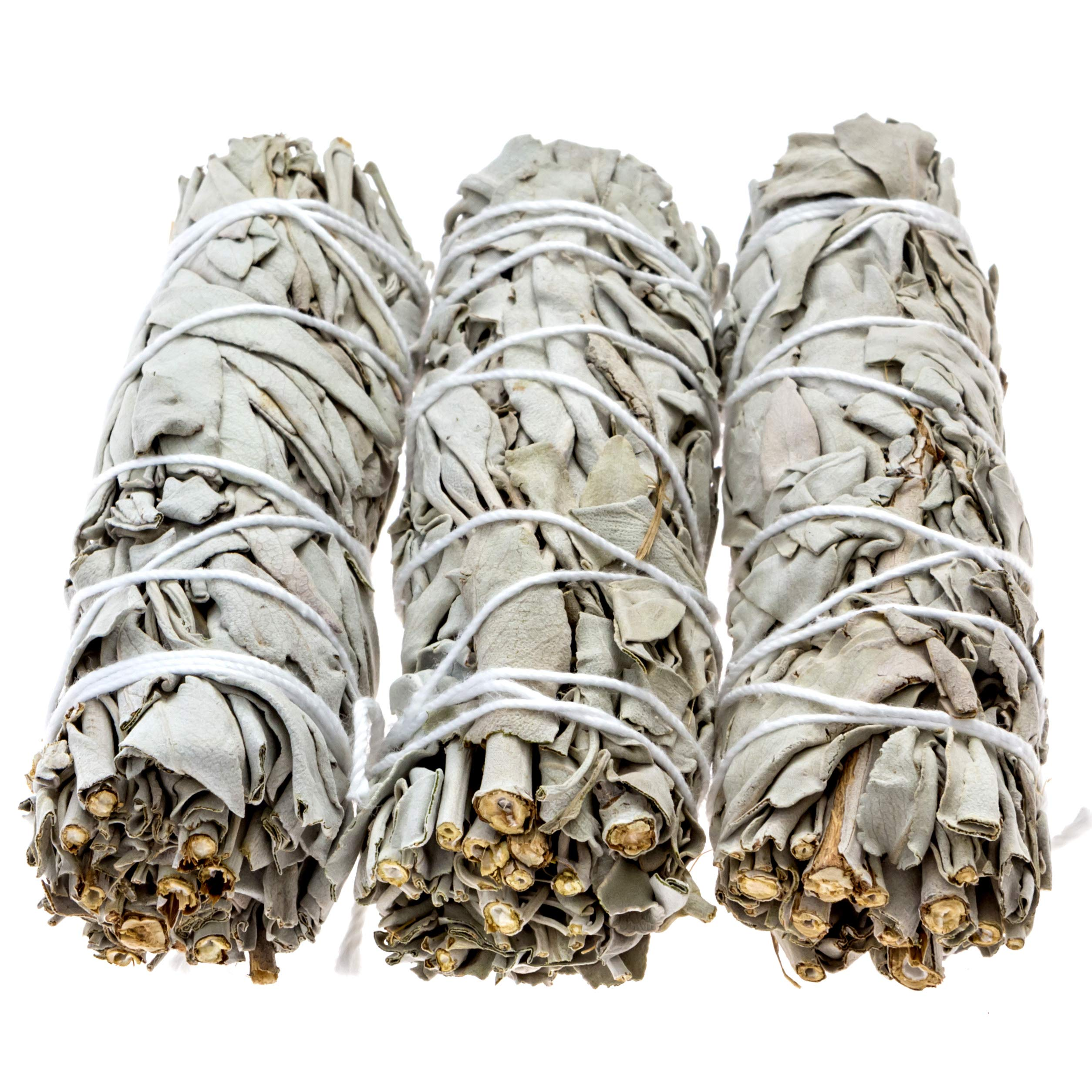 Big Lost Goods 3 Pack, Premium White Sage Smudge Sticks, Mini Bundles 4-5'' Long, Organically Grown in California. Use for: smudging, Energy Cleansing, and Meditation by Big Lost Goods (Image #2)