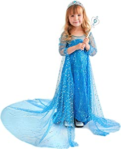 Elsa Dress for Little Princess Costume Giveaway