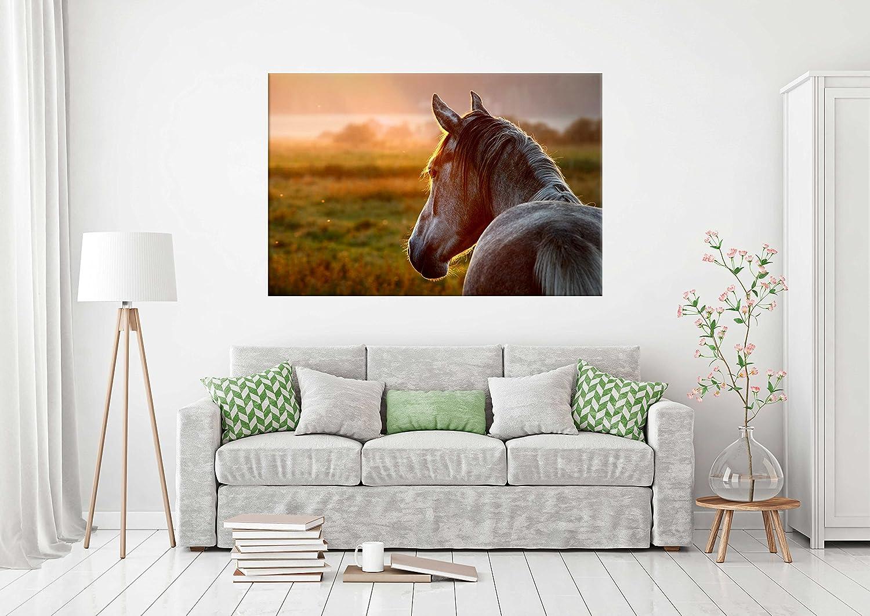 Cuadro Pegasus para Pared Caballo | Cuadro para Paredes | Kappa Decorativo | Varias Medidas 80 x 39 cm | Decoración comedores, Salones, Habitaciones.