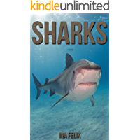 Sharks: Children Book of Fun Facts & Amazing Photos on Animals in   Nature - A Wonderful Sharks Book for Kids aged 3-7