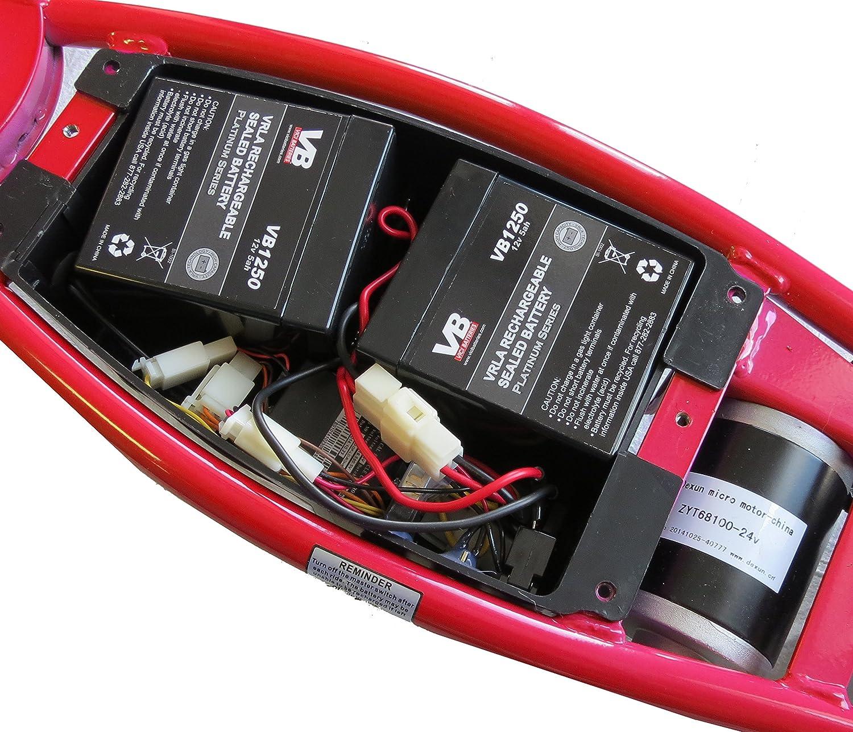 Amazon.com : Razor Scooter Battery - 4.5Ah/20HR w/Reset Wires for Razor  E100/E125(V16+), E150 (V6+), E175 (V1+) & eSpark Scooter by VICI - Includes  Wire ...