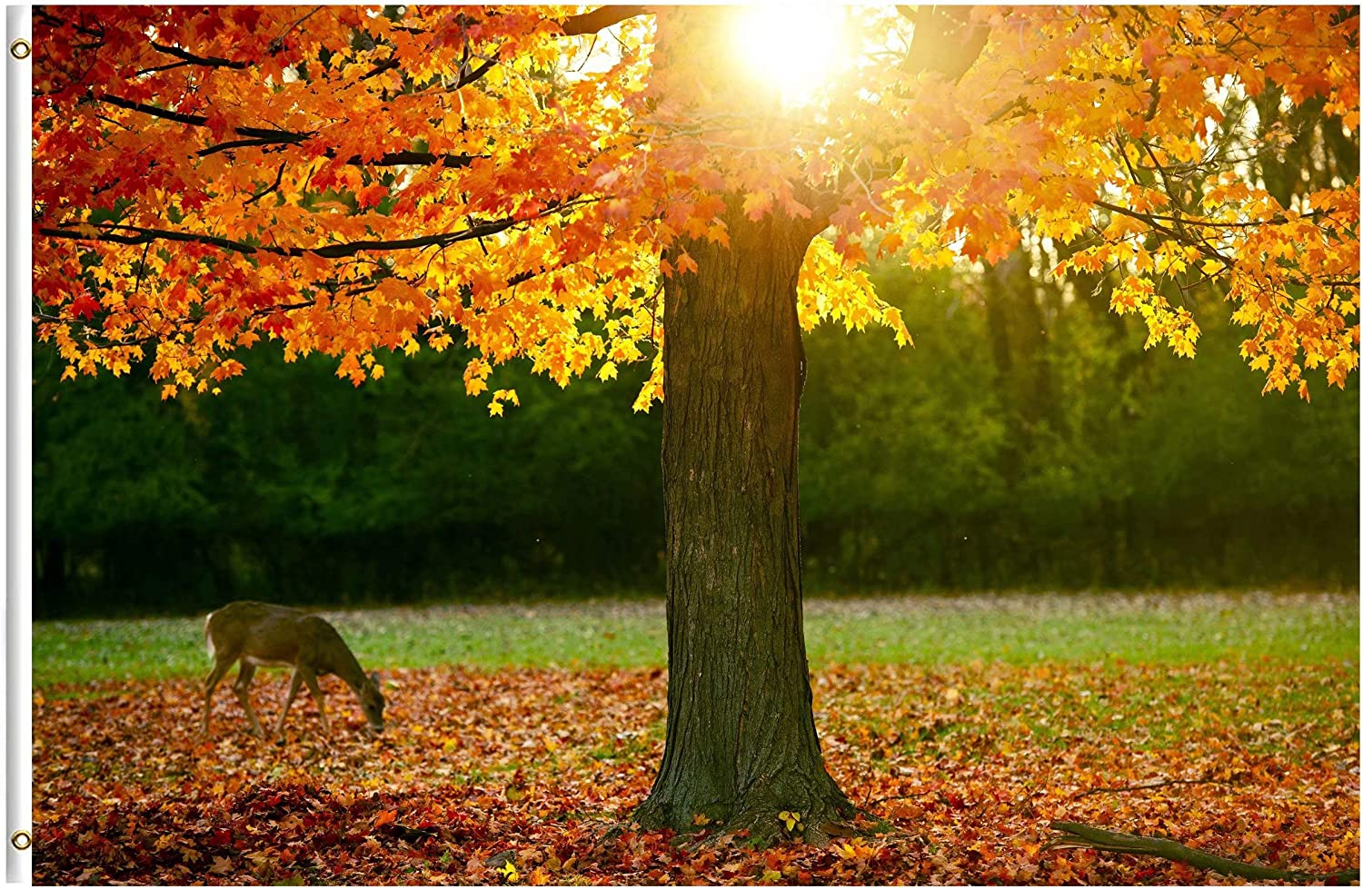 Amazon Com Shinesnow Autumn Forest Maple Tree Fall Leaves Animal Deer Golden Sunlight Seasonal 3x5 Feet Flag Polyester Double Stitched With Brass Grommets 3 X 5 Ft Flag For Outdoor Indoor Home