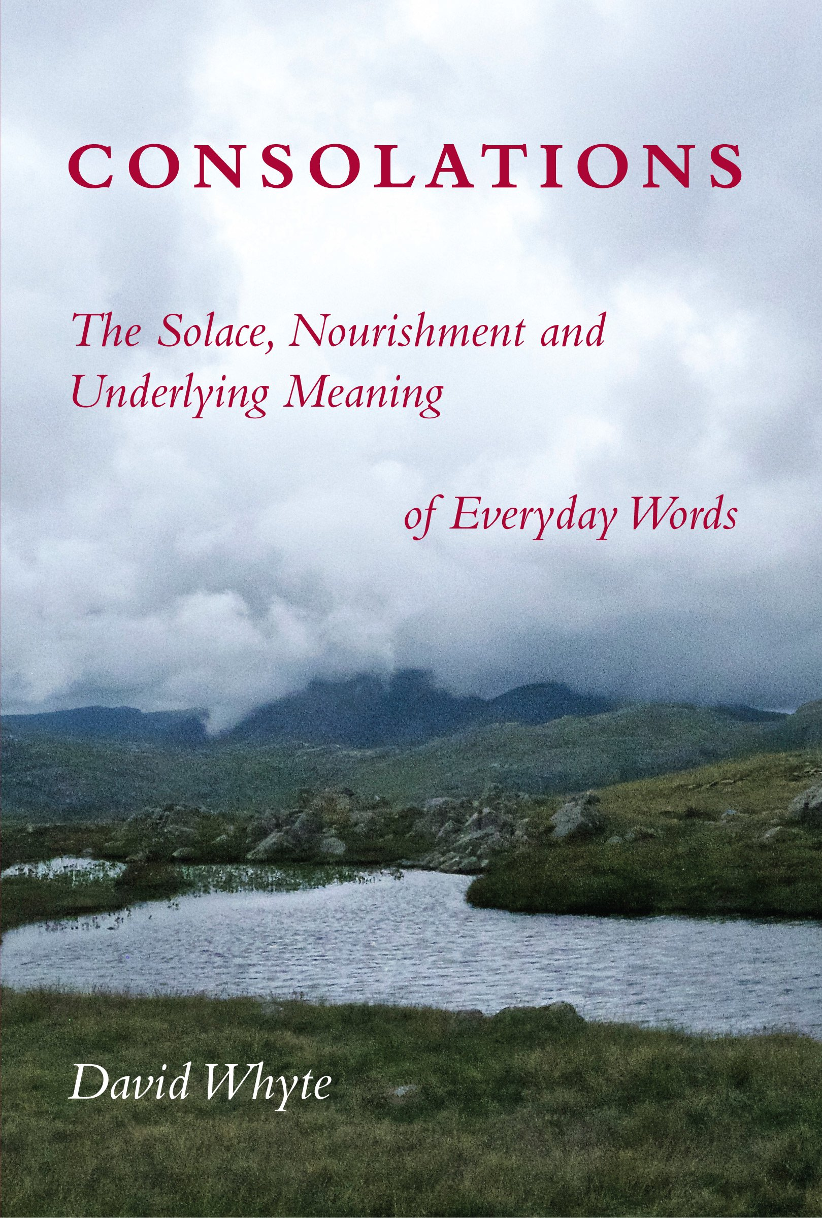 Consolations: The Solace, Nourishment, and Meanings of Everyday Words book cover