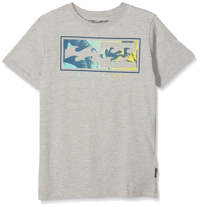 82dbb9567f Amazon.com: Billabong Inverse Boys Short Sleeve T-Shirt Age 16 Grey ...