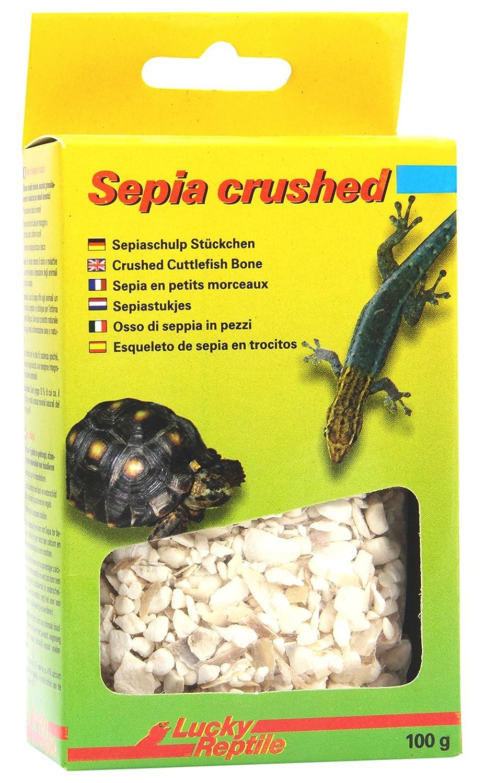 Lucky Reptile Sepia Bone, 1er Pack 1er Pack (1 x 32 g) VLB011