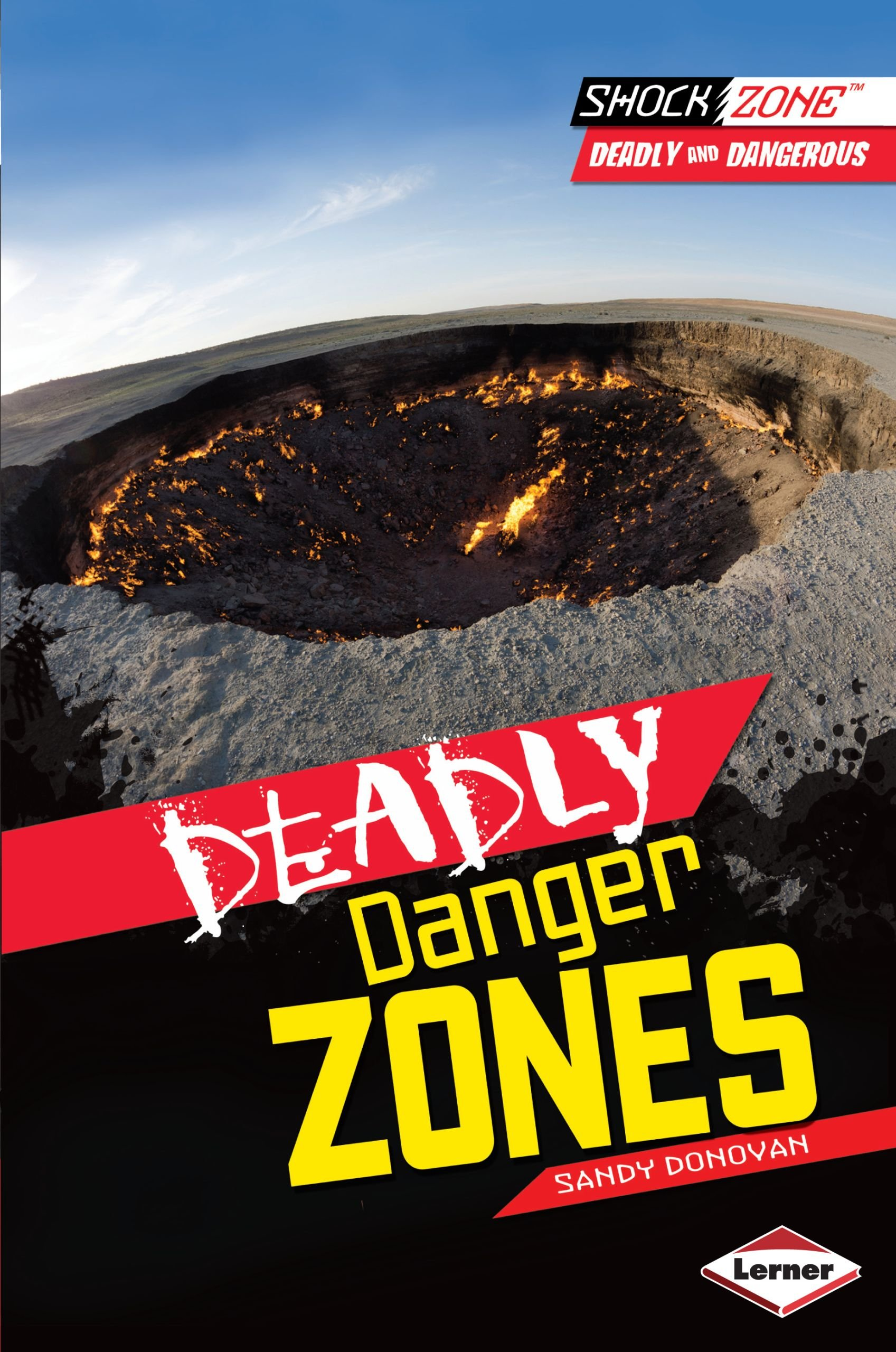 Download Deadly Danger Zones (Shockzone - Deadly and Dangerous) pdf epub