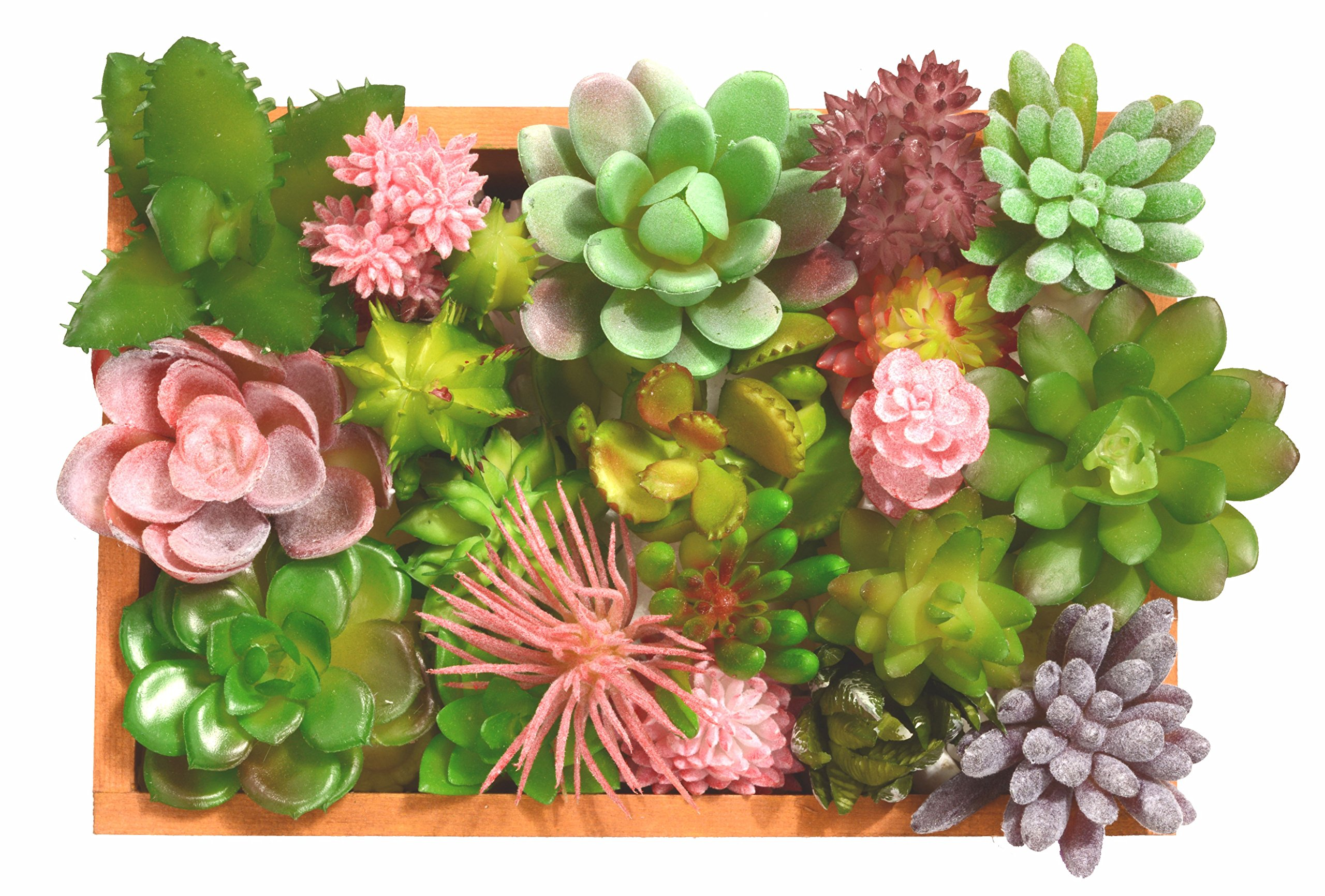 Mixed Artificial Succulent Flowers Plants, Faux Succulents Fake Succulent Plants, Mini Succulent & Cactus Plants in Wood Box, Assorted Decorative Faux Succulents (+ 1 Wood Box)