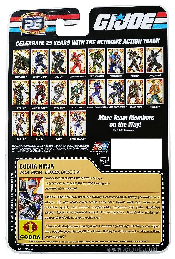 Amazon.com: G.I. Joe 25th Anniversary: Classic Storm sombra ...