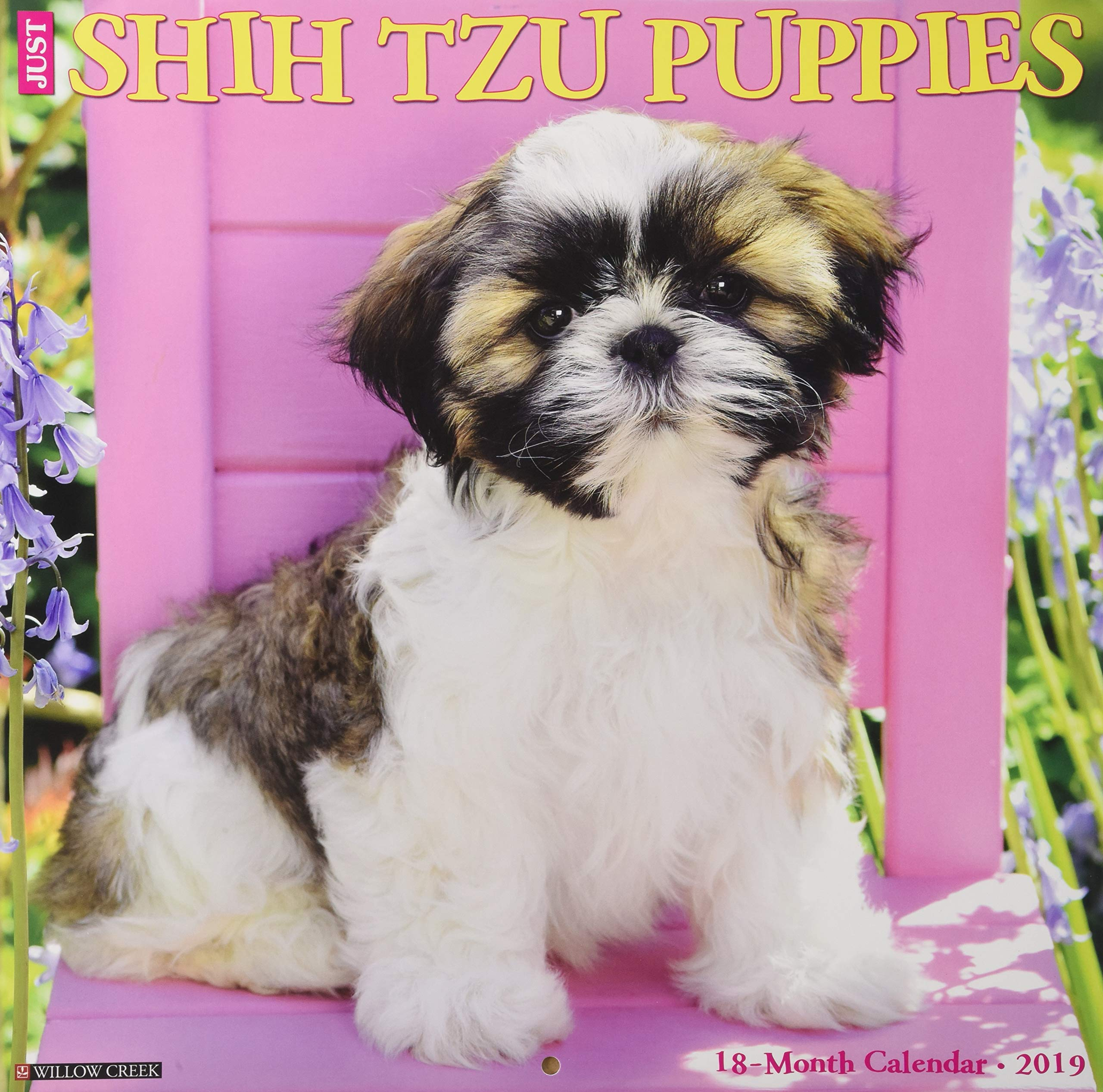 Just Shih Tzu Puppies 2019 Wall Calendar (Dog Breed Calendar ...
