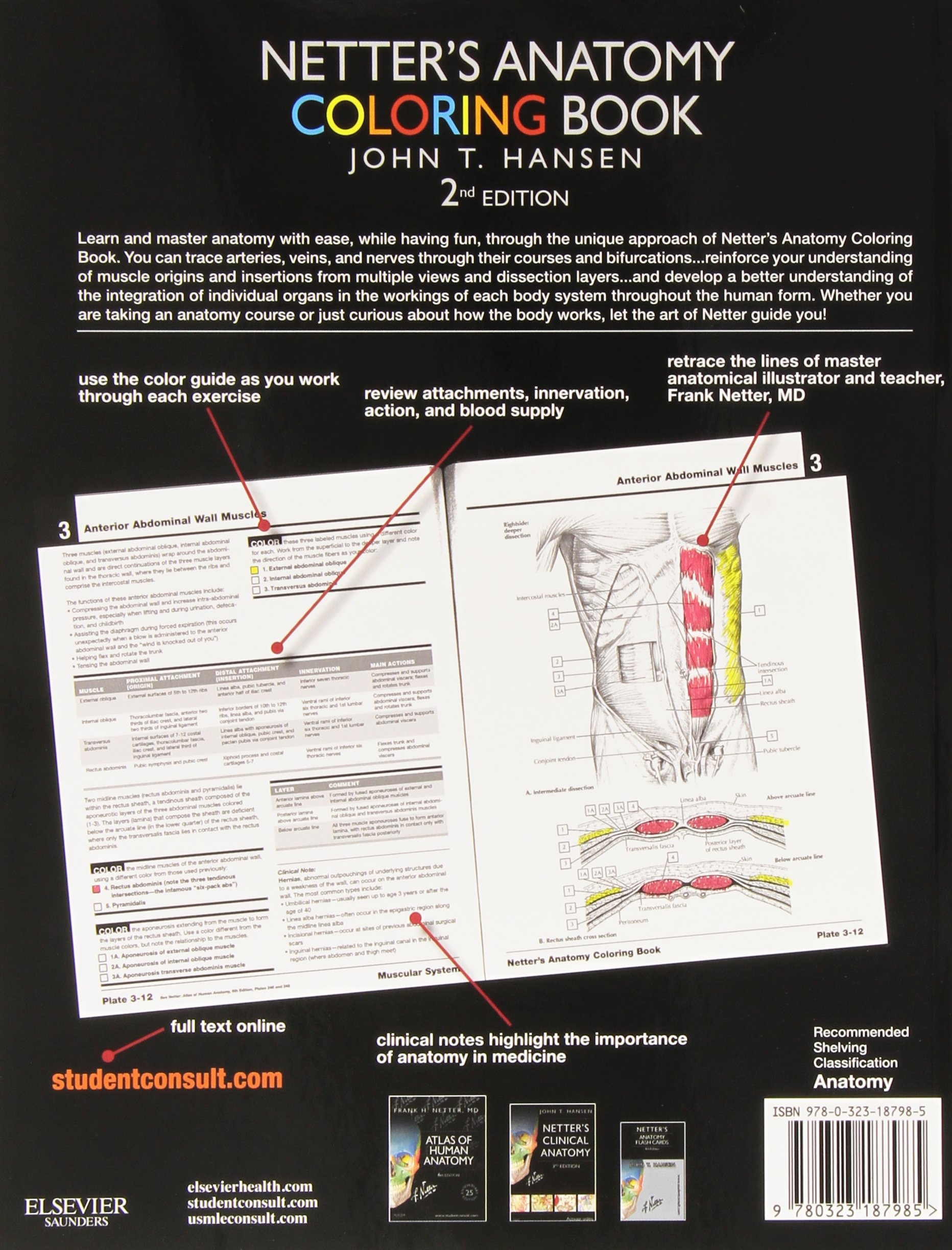 netters anatomy coloring book with student consult access 2e netter basic science amazoncouk john t hansen phd 9780323187985 books - Netters Anatomy Coloring Book