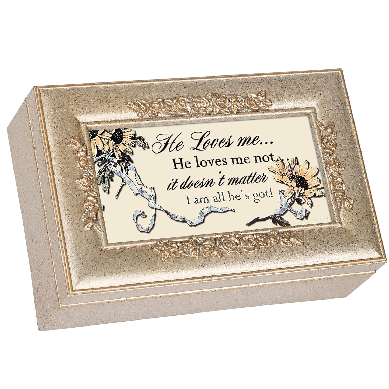 Love Decorative Champagne Silver Rose Music Box B0086PDL2U