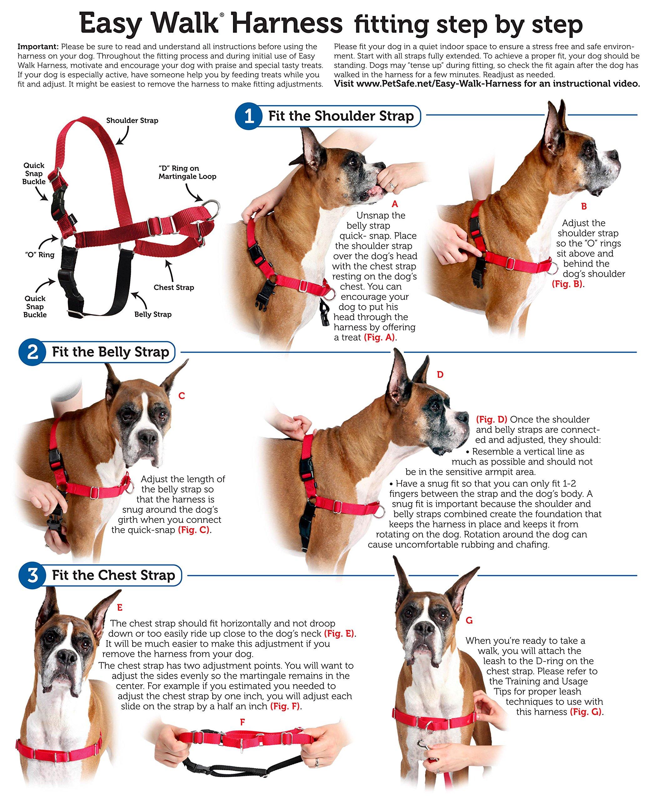 PetSafe Easy Walk Harness, Medium/Large, BLACK/SILVER for Dogs by PetSafe (Image #5)