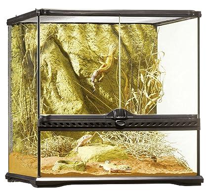 Amazon Com Exo Terra Glass Terrarium 18 By 18 By 18 Inch Pet